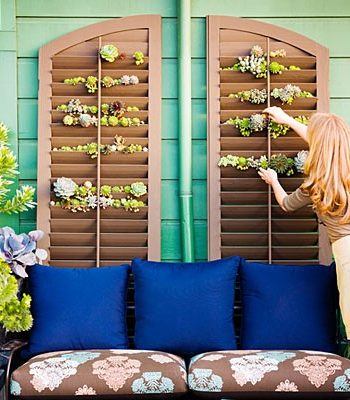 flower-plant-pot-plantation-shutters-2