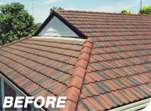 Before Modern Sydney Roof Restoration