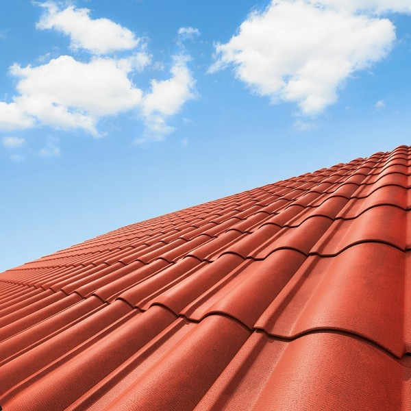 Restored & Cleaned Sydney Roof